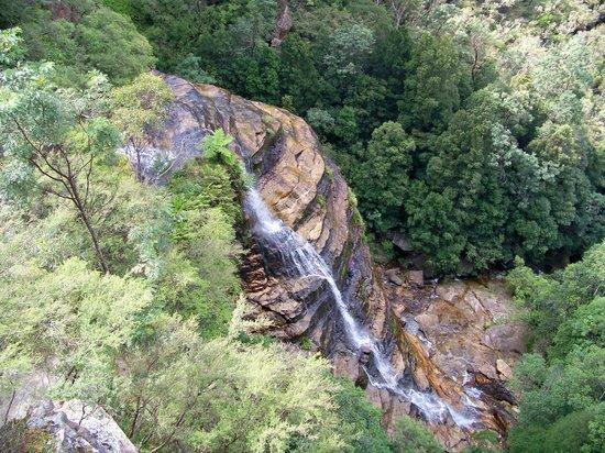 Leura Cascades: The cascades