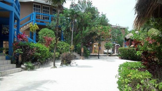 White Sands Cove Resort: Condo and office