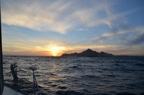 Cabo Sails: Sunset