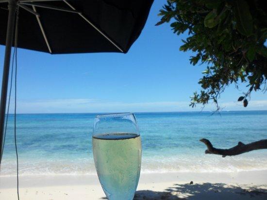 Paradise Cove Resort : Beach Picnic.