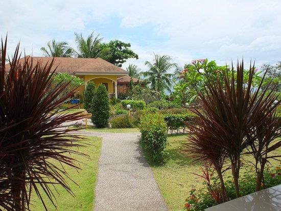 Turtle Bay Dive Resort : il giardino