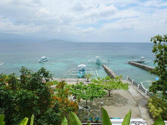 Turtle Bay Dive Resort : vista dalla terrazzodel dive shop