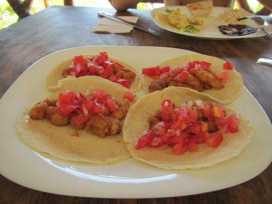 Almaplena Eco Resort & Beach Club: Shrimp tacos