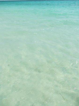 Almaplena Eco Resort & Beach Club: Clear water