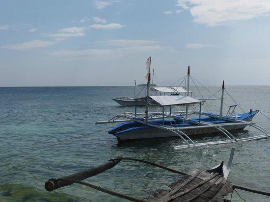 Turtle Bay Dive Resort: il catamarano del diving