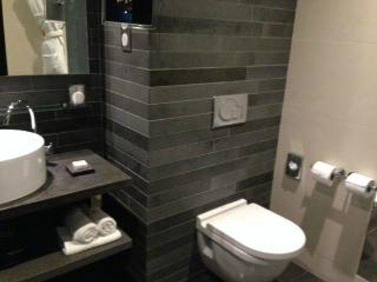 Renaissance Paris Arc de Triomphe Hotel: Bathroom