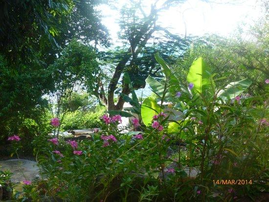 Hotel Refugio de la Luna: rodeada de plantas y flores