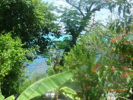 Hotel Refugio de la Luna: vistas desde la terraza-comedor