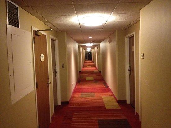 Courtyard Charlotte Arrowood: Clean hallways