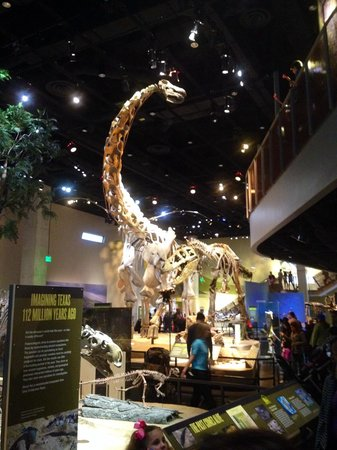 Perot Museum of Nature and Science: Perot Museum