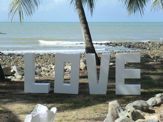 Dolphin Heads Resort: Wedding Venue