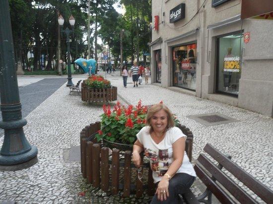 The Flowers Street : Passeio com compras