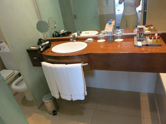 Sheraton Iguazu Resort & Spa : Bathrooms were average