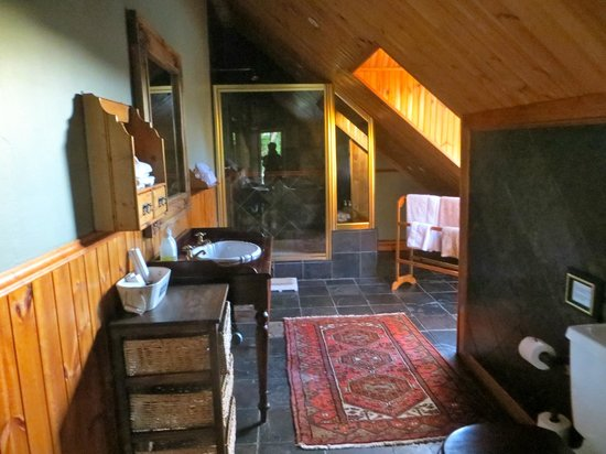 De Oude Pastorie Guesthouse: Bathroom with Large Shower