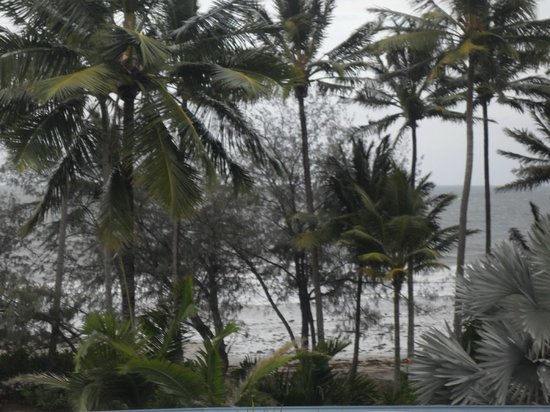 By The Sea Port Douglas : View from room