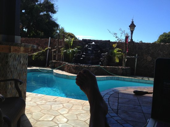 House of Fountains Bed and Breakfast: My favorite place to be ~ out by the salt water pool (no clorine)