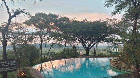 Serengeti Serena Safari Lodge: View from the hotel