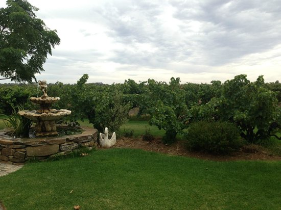 Premium Wine Tours by Scott Ninnis - Private Tours: Garden at one of the wineries