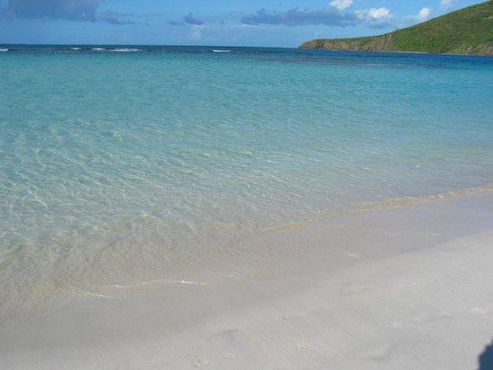 Casita Tropical: The water at Flamenco Beach