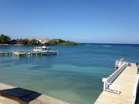 The Beach House: view