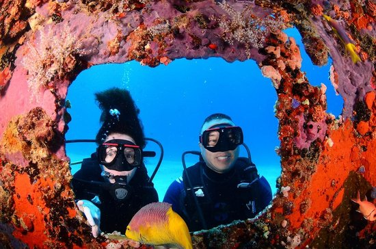 Ocean Explorers Dive Center : Great Picture Frame