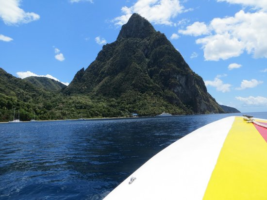 Solomon Water Taxi & Tours: One of the many views from the boat!