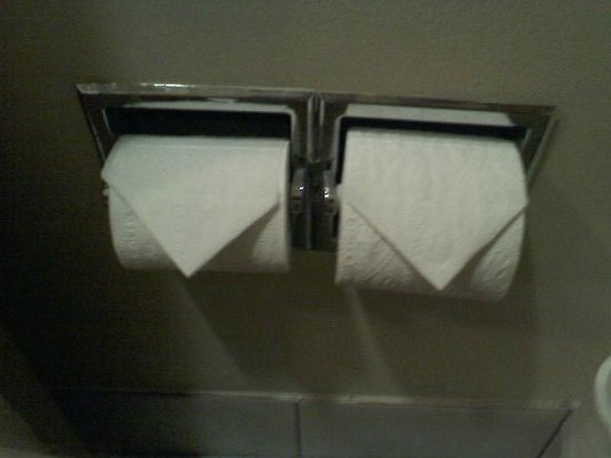 Days Inn by Wyndham Evansdale Waterloo: Folded Toilet Paper Rolls. What a Hoot!