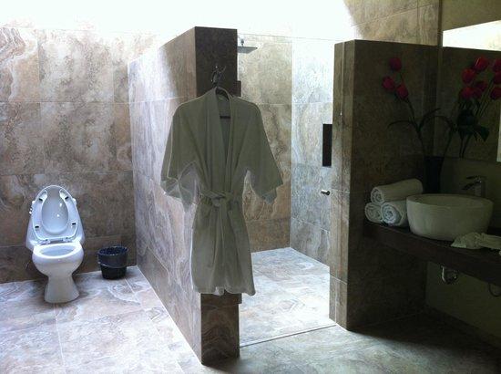 Hacienda San Cristóbal: El baño de un cuarto regular