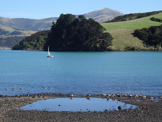 Akaroa Waterfront Motels: View from room