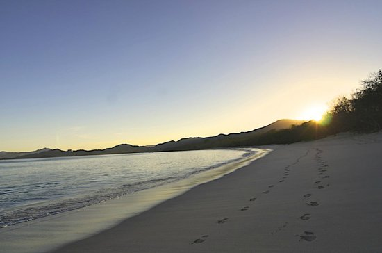 The Westin Golf Resort & Spa, Playa Conchal: Early Morning on the beach