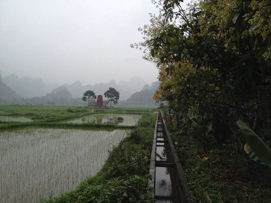 Cat Ba Island : The misty mountains, wet but absolutely picturesque