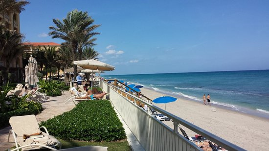 Eau Palm Beach Resort & Spa: View from the pool