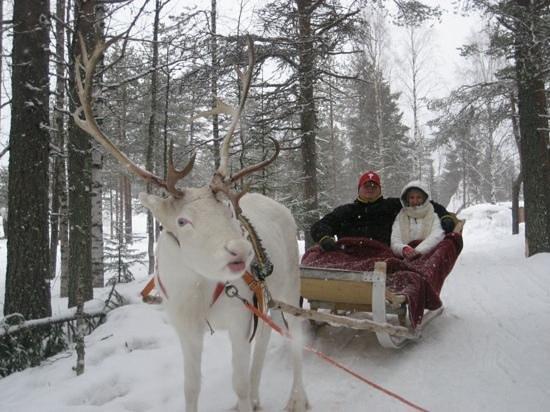 Santa Claus Holiday Village: Reindeer Sarfari