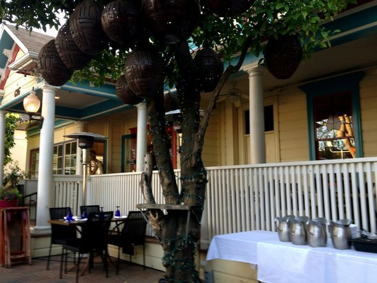 Blue Agave Club: The outdoor dining area