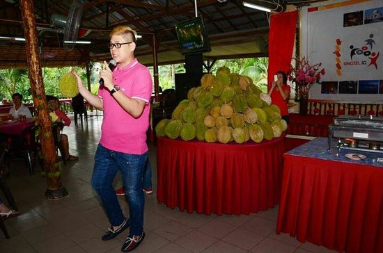 Kota Tinggi, Malasia: Durians feast in July 2013