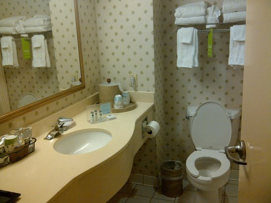 Hampton Inn NY - JFK: Lots of counter space: we ladies like that!