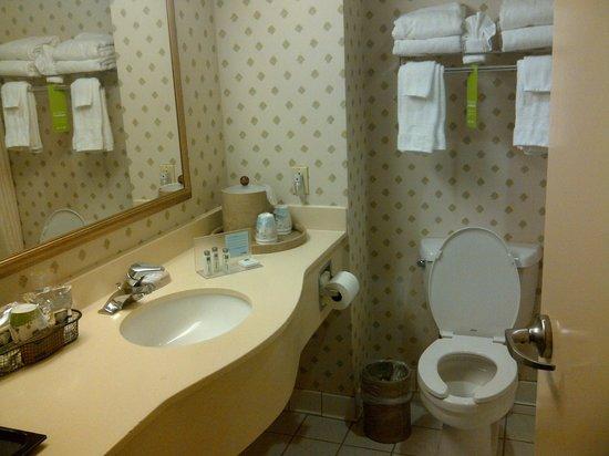 Hampton Inn NY - JFK : Lots of counter space: we ladies like that!