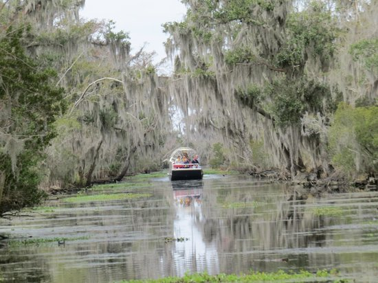 Airboat Adventures : Traveling through the river