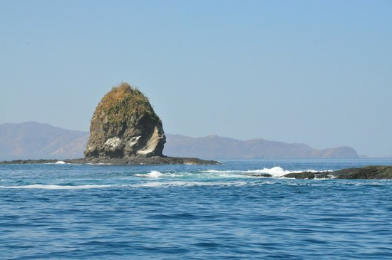 Charlie's Adventure Tours : monkeyhead island