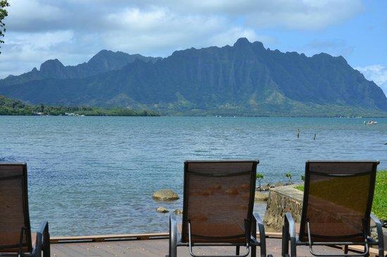 Paradise Bay Resort Hawaii: View from the lanai of room 42