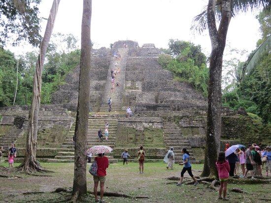 Ecological Tours & Services: Lamanai