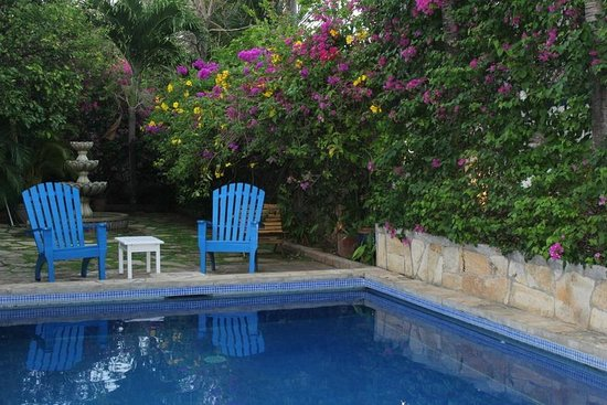 La Posada Azul : Small, refreshing garden/pool