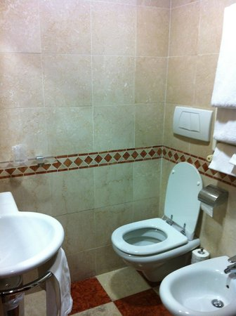 Hotel Del Corso : ok though small bathroom