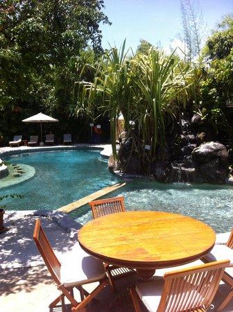 Hotel Puri Cendana : View  from restaurant
