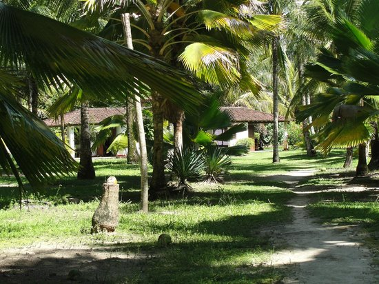 Villa Guaiamu Hotel: Muito arborizada