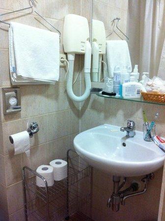 Archibald At the Charles Bridge: ok bathroom