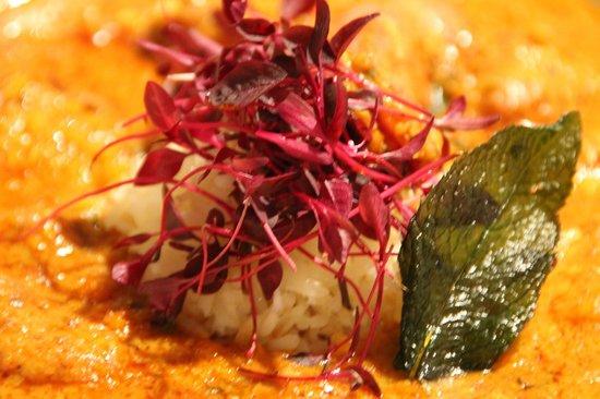Curry Corner Cheltenham Menu Prices Restaurant Reviews