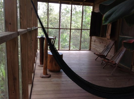 Belize Zoo Jungle Lodge/Tropical Education Center: Our Tree House porch