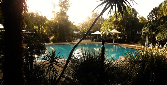 Angourie Rainforest Resort: Nice pool with plenty of lounge-type seating and water dragons :)