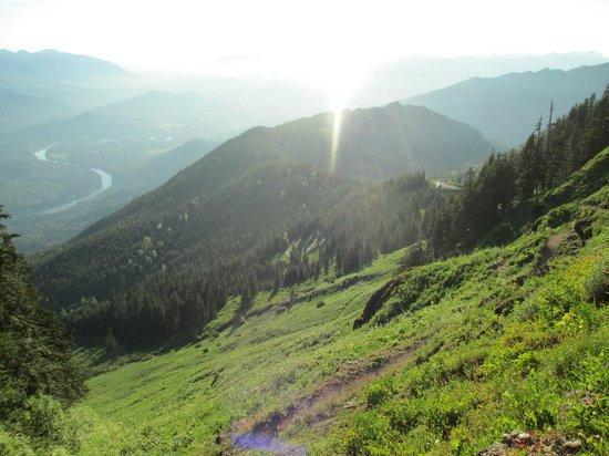 Sauk Mountain Trail : Switchbacks